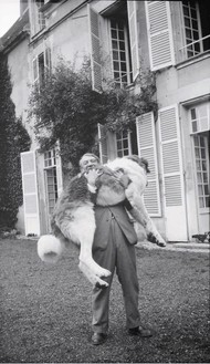 Picasso with Bob (the Great Pyrenees), Château de Boisgeloup, France, 1932 Modern print from original negative, 4 ⅝ × 2 ¾ inches (11.7 × 6.9 cm)Archives Olga Ruiz-Picasso© 2014 Estate of Pablo Picasso/Artists Rights Society (ARS), New York