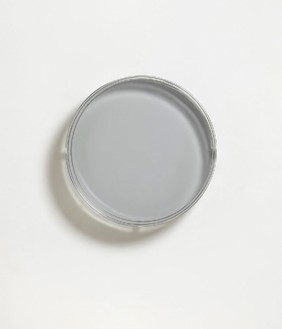 Rachel Whiteread, Ocular (II), 2013 Resin, 19 5/16 × 19 5/16 × 3 ¾ inches (49 × 49 × 9.5 cm)