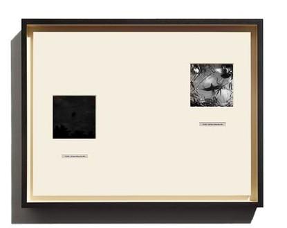 Taryn Simon, Crab Key, 2014 Archival inkjet prints in boxed mat and aluminum frame, 19 ¾ × 26 ⅛ inches (50.2 × 66.4 cm)© 2014 Taryn Simon