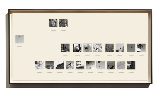 Taryn Simon, Switzerland, 2014 Archival inkjet prints in boxed mats and aluminum frames, 39 ⅞ × 79 7/16 inches (101.3 × 201.8 cm)© 2014 Taryn Simon