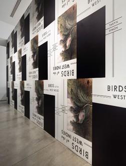 Installation view, photo by Fredrik Nilsen