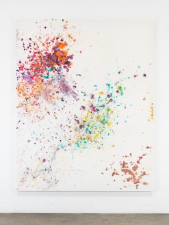 Dan Colen, Thristy and Miserable, 2016 Flowers on bleached Belgian linen, 93 × 74 inches (236.2 × 188 cm)© Dan Colen