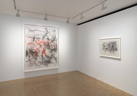 Installation view Artwork © Jenny Saville. Photo: Mike Bruce