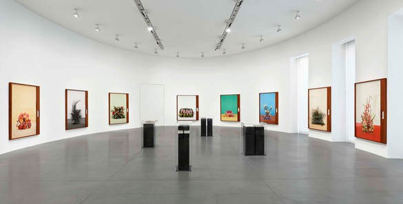 Installation view Artworks © Taryn Simon, photo by Matteo D'Eletto