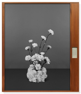 Taryn Simon, Bratislava Declaration, Bratislava, Slovakia, August 3, 1968, from the series Paperwork and the Will of Capital, 2015 Archival inkjet print and text on archival herbarium paper in wood frame, 85 × 73 ¼ × 2 ¾ inches (215.9 × 186.1 × 7 cm), edition of 3 + 2 AP© Taryn Simon