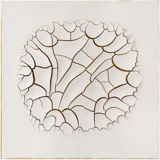 Adriana Varejão, Monocromo Roma I, 2016 Oil and plaster on canvas, 70 ⅞ × 70 ⅞ inches (180 × 180 cm)© Adriana Varejão. Photo: Vicente de Mello