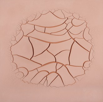 Adriana Varejão, Rose Song – LA, 2017 Oil and plaster on canvas, 70 ⅞ × 70 ⅞ inches (180 × 180 cm)© Adriana Varejão. Photo: Jaime Acioli