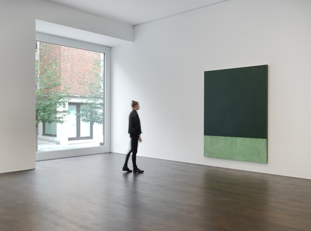 Installation view Artwork © Brice Marden/Artists Rights Society (ARS), New York, and DACS, London 2017. Photo: Mike Bruce