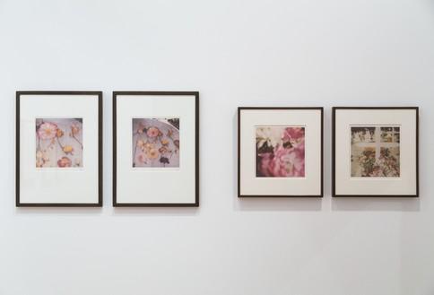 Installation view Artwork © Nicola Del Roscio Foundation. Photo: Silia Psychi