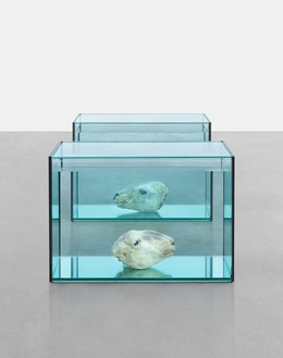 Damien Hirst, Analgesics, 1993 Glass, silicone, acrylic, polystyrene, sheep's heads, and formaldehyde solution, in 2 parts, dimensions variable© Damien Hirst and Science Ltd. All rights reserved. DACS 2017
