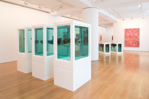 Installation view Artworks © Damien Hirst and Science Ltd. All rights reserved. DACS 2017