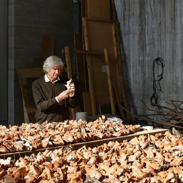 Giuseppe Penone: Equivalenze, Rome