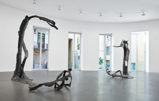 Installation view Artwork © Giuseppe Penone. Photo: Matteo D'Eletto, M3 Studio