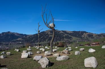 Giuseppe Penone: Idee di Pietra, Gstaad, Switzerland