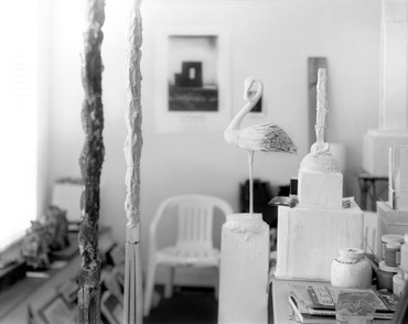 Sally Mann: Remembered Light: Cy Twombly in Lexington, Athens