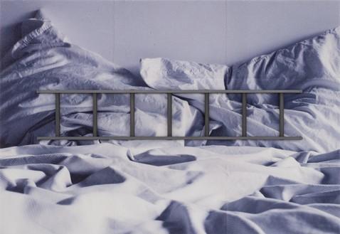 Adam McEwen, TBT (Ladder), 2018 Inkjet print on cellulose sponge and graphite, 76 × 110 × 4 ¼ inches (193 × 279.4 × 10.8 cm)© Adam McEwen. Photo: Jeff McLane