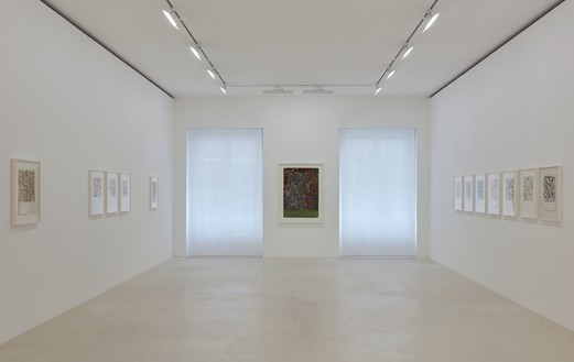 Installation view Artwork © 2019 Brice Marden/Artists Rights Society (ARS), New York. Photo: Thomas Lannes