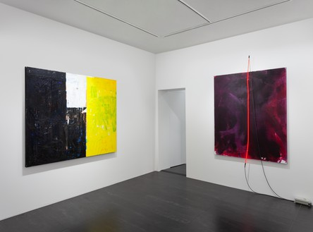 Installation view Artwork, left to right: © Joe Bradley, © Mary Weatherford