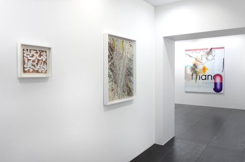 Installation view Artwork, left to right: © 2019 Robert Ryman/Artists Rights Society (ARS), New York; © Mark Grotjahn; © Albert Oehlen