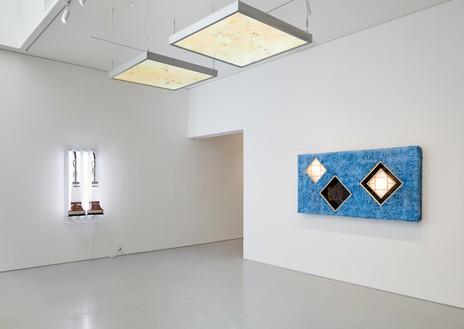 Installation view Artwork, left to right: © Jeff Koons, © Anicka Yi. Photo: Glen Cheriton