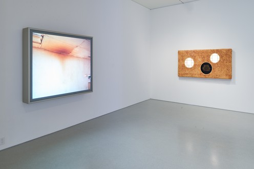 Installation view Artwork, left to right: © Jeff Wall, © Anicka Yi. Photo: Glen Cheriton