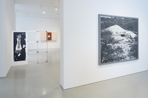 Installation view Artwork, left to right: © Cady Noland, © Anicka Yi, © Jeff Wall. Photo: Glen Cheriton