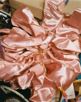 Roe Ethridge, The Pink Bow, 2001–02 Dye sublimation print on aluminum, 30 × 24 inches (76.2 × 61 cm), edition of 5 + 2 AP© Roe Ethridge