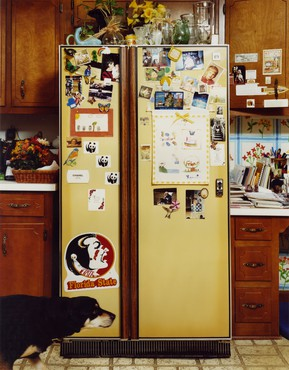 Roe Ethridge, Refrigerator, 1999