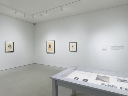 Installation view Artwork © 2020 The Jay DeFeo Foundation/Artists Rights Society (ARS), New York. Photo: Robert Divers Herrick