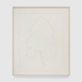 Ellsworth Kelly, Burdock, 1969 Ink on paper, 29 × 23 inches (73.7 × 58.4 cm)© Ellsworth Kelly Foundation