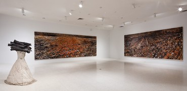 Installation view, Regeneration Series: Anselm Kiefer from the Hall Collection, NSU Art Museum, Fort Lauderdale, Florida, 2017. Photo by Steven Brooke