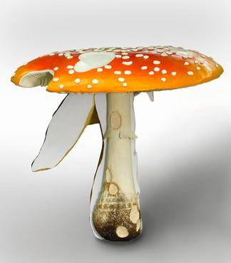 Carsten Höller, Giant Triple Mushroom, 2010© Carsten Höller