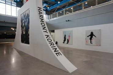 Installation view, Harmony Korine, Centre Pompidou, Paris, October 6–November 5, 2017. Photo byZarko Vijatovic