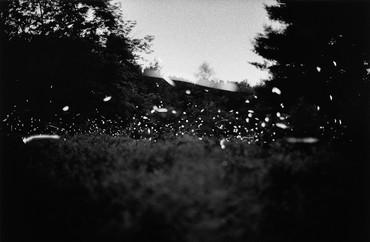 Gregory Crewdson, Untitled, 1996