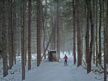 Gregory Crewdson,Cathedral of the Pines, 2014
