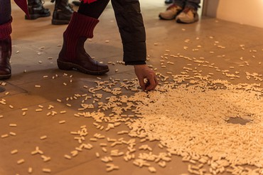Installation view, Altered States. Substances in Contemporary Art, Kunstpalais Erlangen, Germany, March 4–May 21, 2018. Artwork © Carsten Höller. Photo: Kilian Reil © VG Bild-Kunst, Bonn 2018
