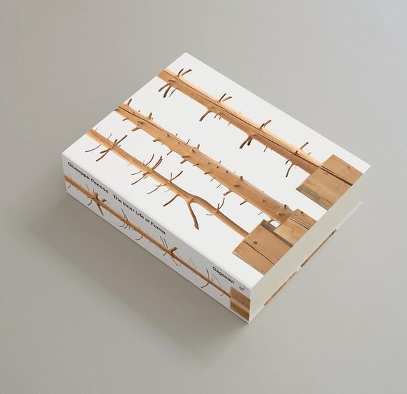Giuseppe Penone:The Inner Life of Forms (New York: Gagosian, 2018)