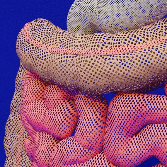 Davide Balula, Intestine Mesh, 2018 © Davide Balula. Photo: A. Coiro