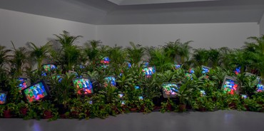 Nam June Paik, TV Garden, 1974–77 © Estate of Nam June Paik
