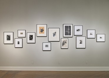 Installation view, Jay DeFeo: Undersoul, San José Museum of Art, San Jose, California, March 8–July 7, 2019. Artwork © 2020 The Jay DeFeo Foundation/Artists Rights Society (ARS), New York. Photo: Phil Bond