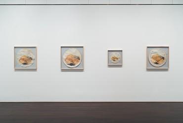 Installation view, Ed Ruscha: Drum Skins, Blanton Museum of Art, Austin, Texas, January 11– October 4, 2020 © Ed Ruscha