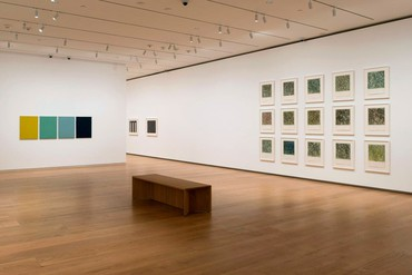 Installation view, Think of Them as Spaces: Brice Marden's Drawings, Menil Collection, Houston, February 21–October 11, 2020. Artwork © 2020 Brice Marden/Artists Rights Society (ARS), New York. Photo: Paul Hester