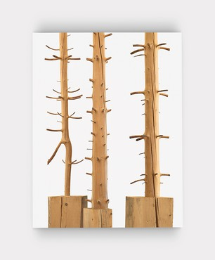 Giuseppe Penone: The Inner Life of Forms (New York: Gagosian, 2018)