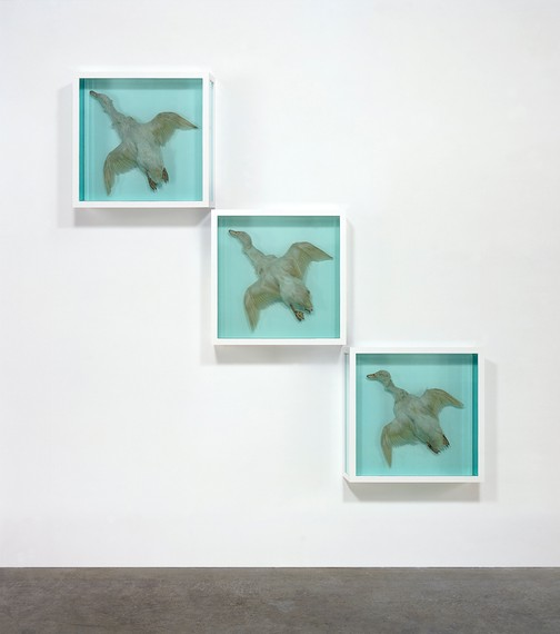 Damien Hirst, Up, Up and Away, 1997 © Damien Hirst and Science Ltd. All rights reserved, DACS 2020