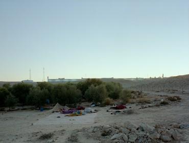Jeff Wall, Daybreak (on an olive farm/Negev Desert/Israel), 2011 © Jeff Wall