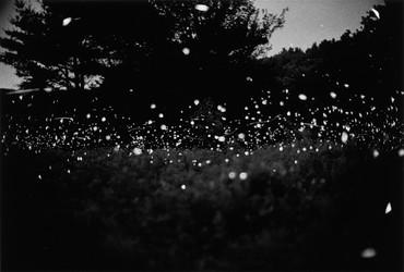 Gregory Crewdson, Untitled, 1996 © Gregory Crewdson