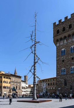 Giuseppe Penone, Abete (Fir), 2013, installation view, Piazza della Signoria, Florence, Italy © Giuseppe Penone/2021 Artists Rights Society (ARS), New York/ADAGP, Paris