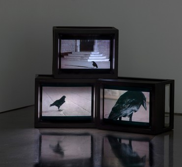 Douglas Gordon, Looking Down with His Black, Black, Ee, 2008 © Studio lost but found/VG Bild-Kunst, Bonn, 2018