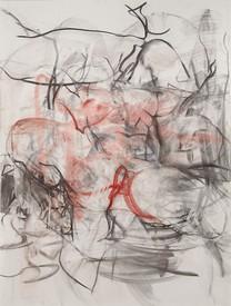 Jenny Saville: Erota