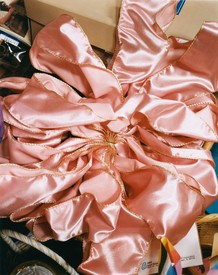 Photograph of pink satin bow by Roe Ethridge